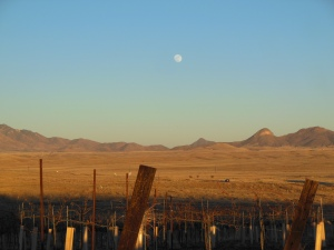 Moonrise over Sonoita