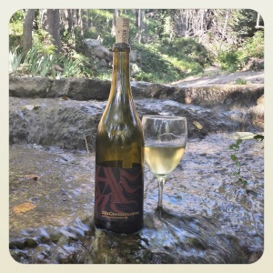 2014 Gewürztraminer, from Bonita Springs Vineyards, in a mountain stream